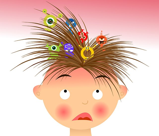 lice illustration