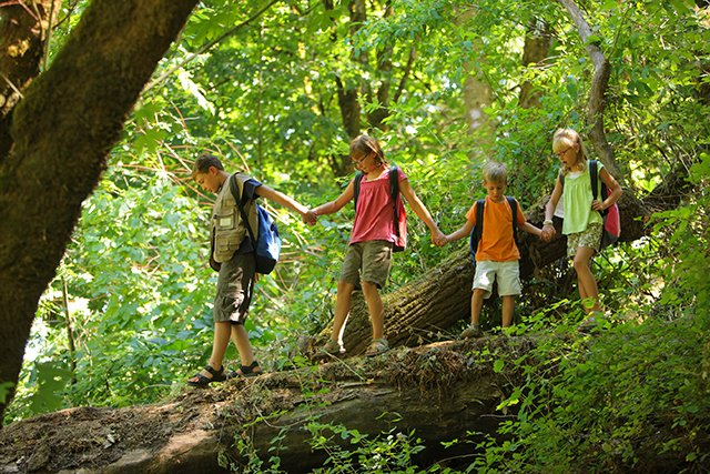 kids hiking in green woods