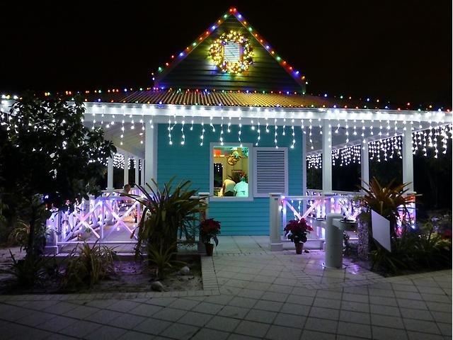 Botanical Gardens Night Lights