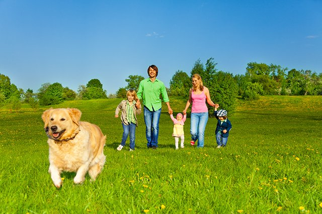 family walking with dog outside