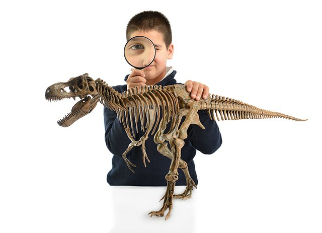 Boy with dinosaur