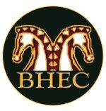 Bobbin Hollow logo
