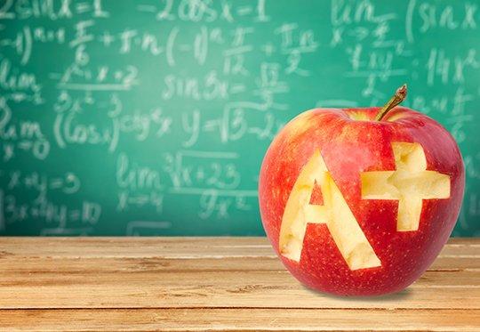 How do Collier schools get their grade?