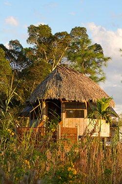 Seminole Chickee Hut