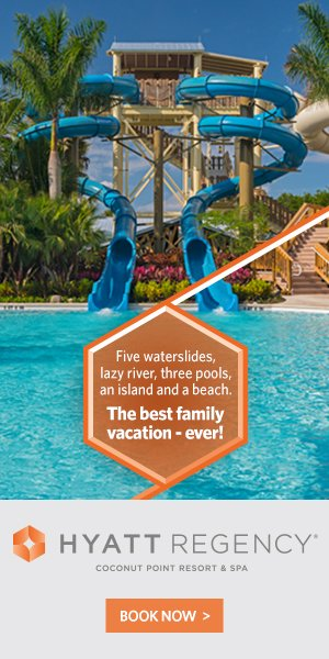 Hyatt Waterslide promo 2017
