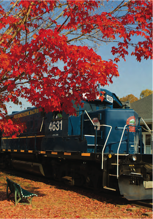 Blue Ridge Scenic Railway Fall Train