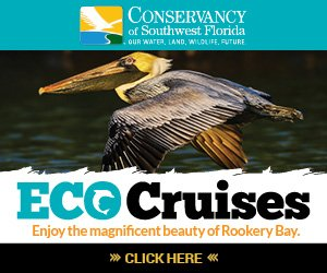 Conservancy Eco Cruise