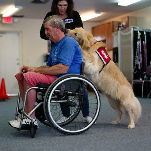 PAWS wheelchair