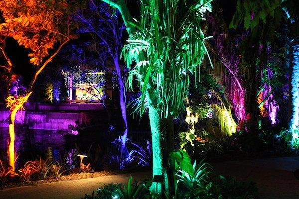 Botanical Garden Night Lights 1