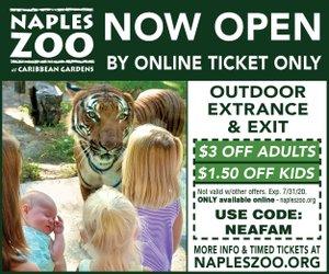 Zoo mid July 2020