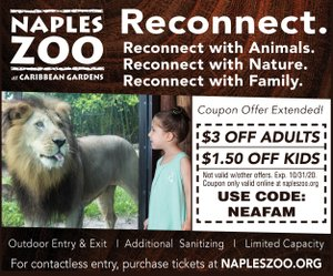 Zoo reconnect