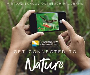 Get Connected to Nature