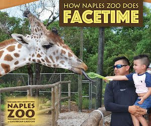 Zoo August 2021