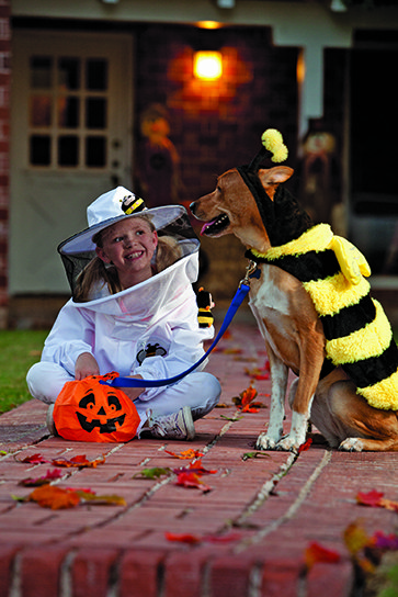 halloween costume with dog