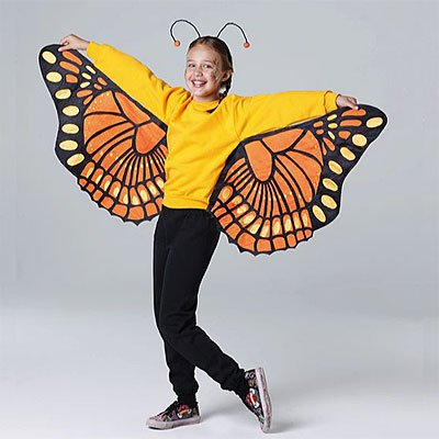 butterfly cosutume