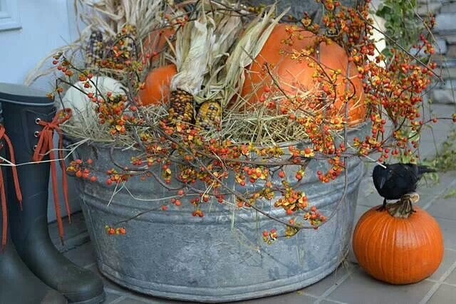 5. wash buckets with pumpkins