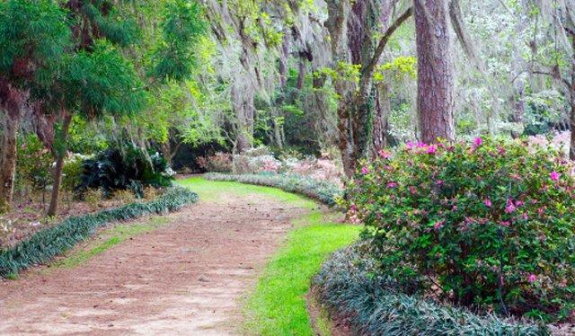 McKay Gardens tallahassee