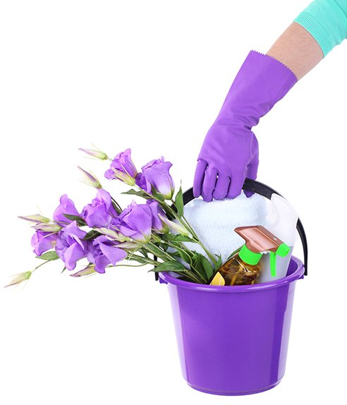 cleaning supplies in purple bucket isolated